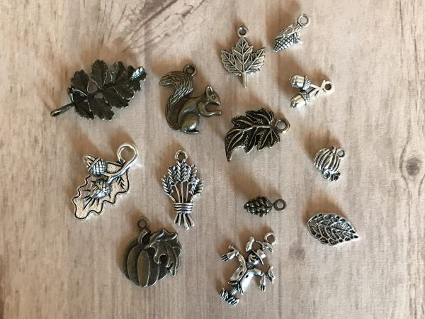 Autumn Harvest Tibetan Charms Collection